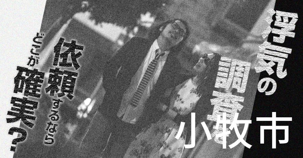 愛知県小牧市で浮気の調査を依頼するならどこが確実?費用がムダにならないおススメ興信所の選び方など