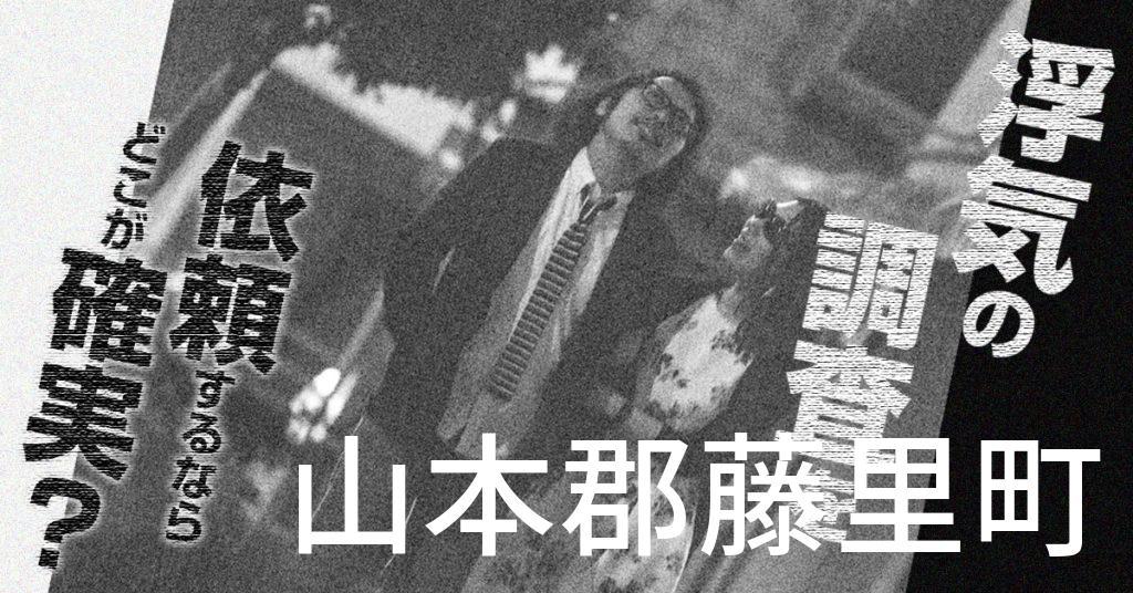 秋田県山本郡藤里町で浮気の調査を依頼するならどこが確実?費用がムダにならないおススメ興信所の選び方など