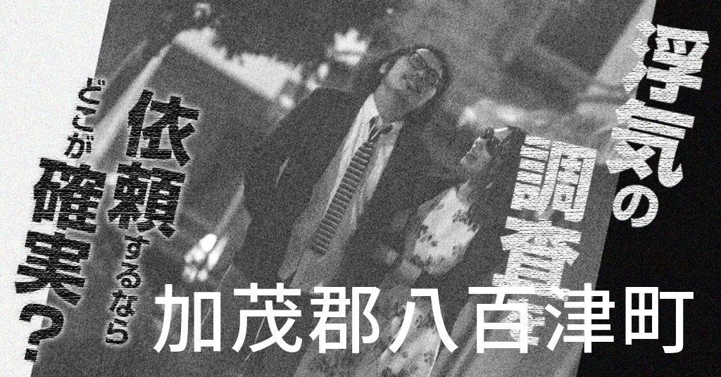 岐阜県加茂郡八百津町で浮気の調査を依頼するならどこが確実?費用がムダにならないおススメ興信所の選び方など