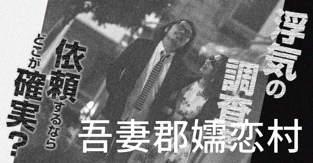 群馬県吾妻郡嬬恋村で浮気の調査を依頼するならどこが確実?費用がムダにならないおススメ興信所の選び方など