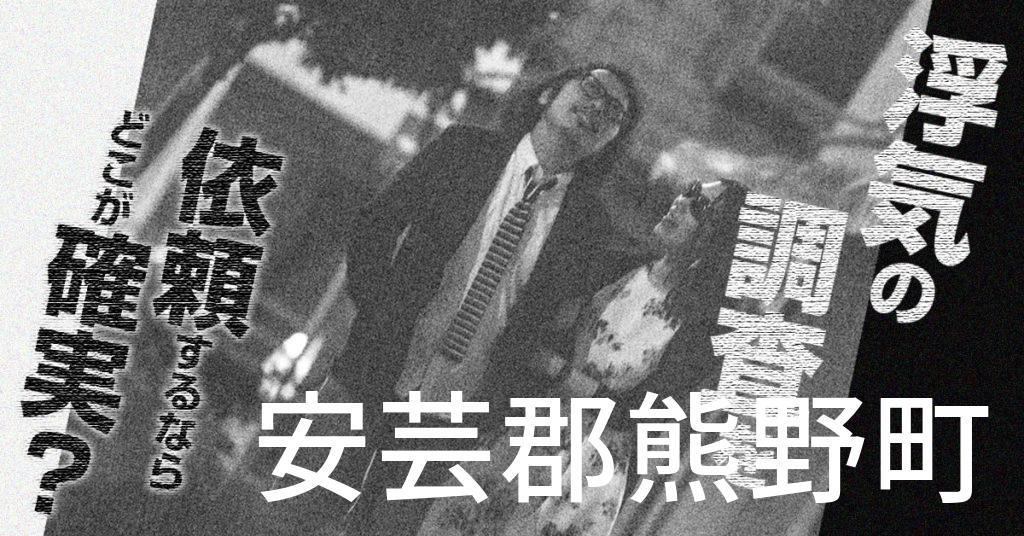 広島県安芸郡熊野町で浮気の調査を依頼するならどこが確実?費用がムダにならないおススメ興信所の選び方など