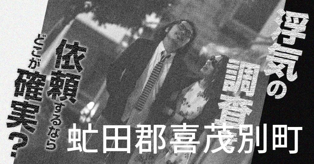 北海道虻田郡喜茂別町で浮気の調査を依頼するならどこが確実?費用がムダにならないおススメ興信所の選び方など