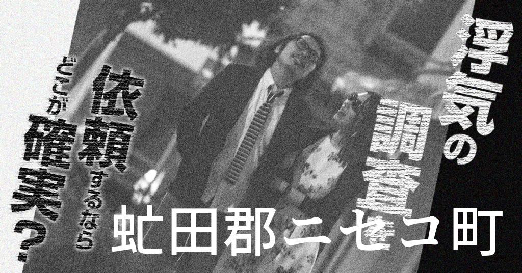 北海道虻田郡ニセコ町で浮気の調査を依頼するならどこが確実?費用がムダにならないおススメ興信所の選び方など