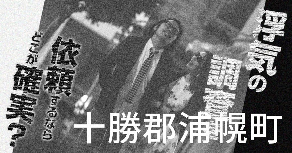 北海道十勝郡浦幌町で浮気の調査を依頼するならどこが確実?費用がムダにならないおススメ興信所の選び方など