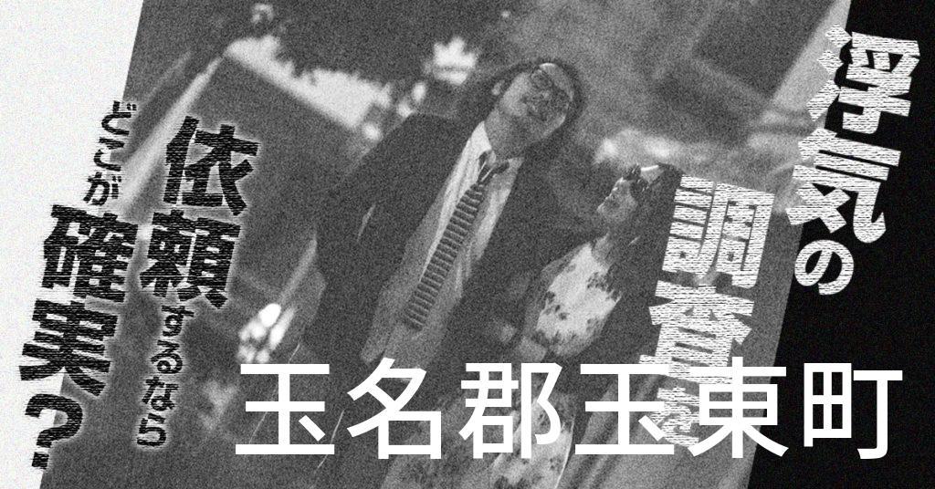 熊本県玉名郡玉東町で浮気の調査を依頼するならどこが確実?費用がムダにならないおススメ興信所の選び方など