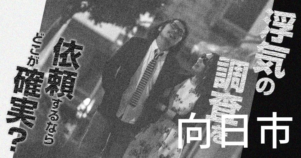京都府向日市で浮気の調査を依頼するならどこが確実?費用がムダにならないおススメ興信所の選び方など