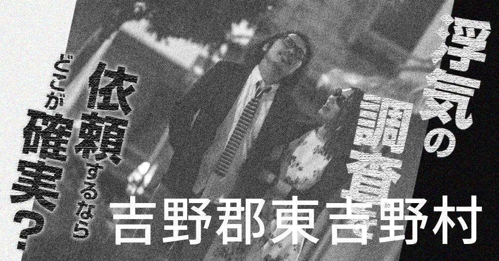 奈良県吉野郡東吉野村で浮気の調査を依頼するならどこが確実?費用がムダにならないおススメ興信所の選び方など