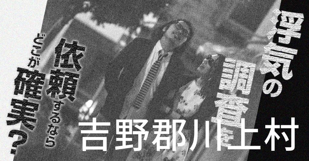 奈良県吉野郡川上村で浮気の調査を依頼するならどこが確実?費用がムダにならないおススメ興信所の選び方など