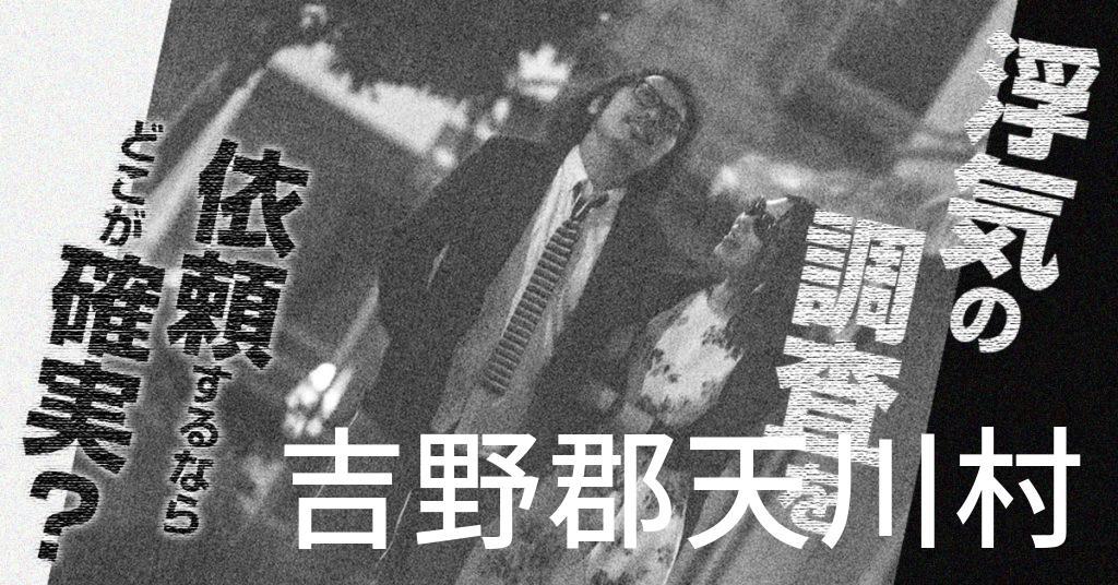奈良県吉野郡天川村で浮気の調査を依頼するならどこが確実?費用がムダにならないおススメ興信所の選び方など