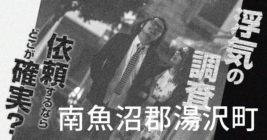 新潟県南魚沼郡湯沢町で浮気の調査を依頼するならどこが確実?費用がムダにならないおススメ興信所の選び方など