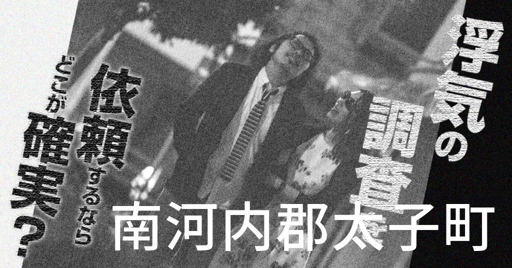 大阪府南河内郡太子町で浮気の調査を依頼するならどこが確実?費用がムダにならないおススメ興信所の選び方など