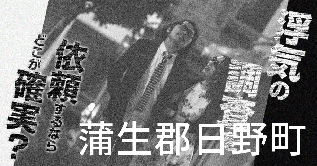 滋賀県蒲生郡日野町で浮気の調査を依頼するならどこが確実?費用がムダにならないおススメ興信所の選び方など