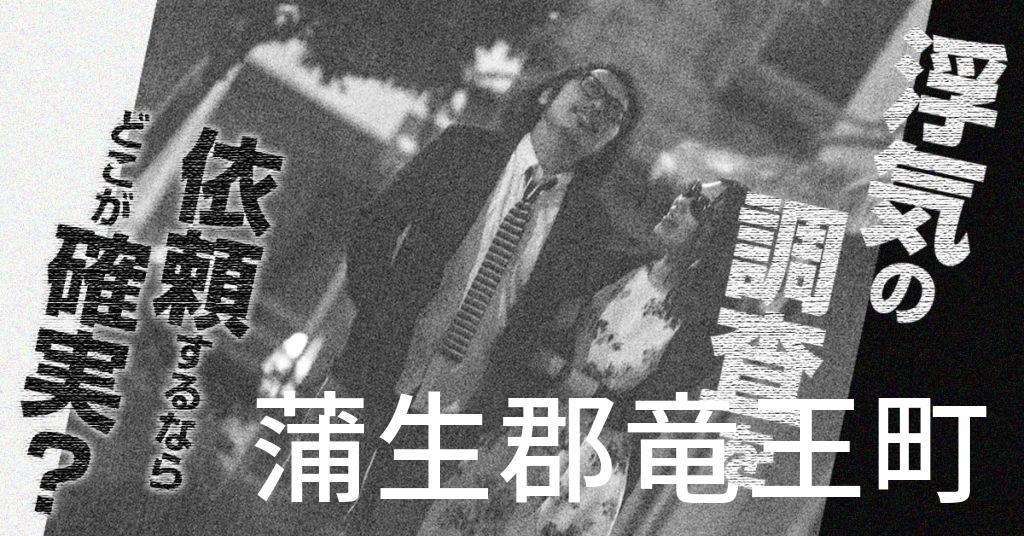 滋賀県蒲生郡竜王町で浮気の調査を依頼するならどこが確実?費用がムダにならないおススメ興信所の選び方など