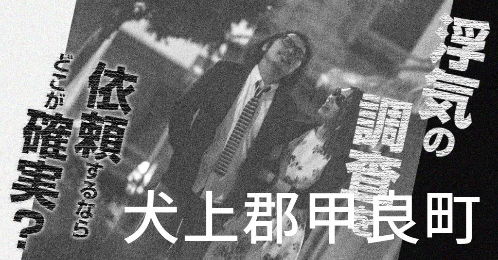 滋賀県犬上郡甲良町で浮気の調査を依頼するならどこが確実?費用がムダにならないおススメ興信所の選び方など