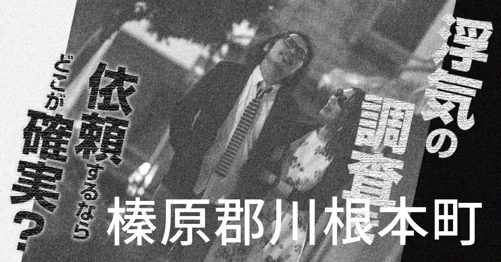 静岡県榛原郡川根本町で浮気の調査を依頼するならどこが確実?費用がムダにならないおススメ興信所の選び方など