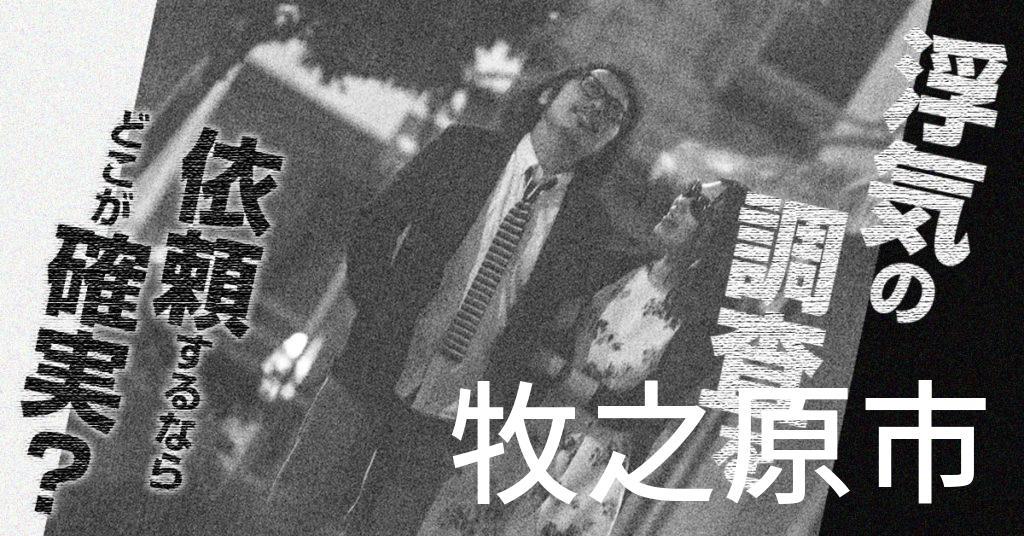静岡県牧之原市で浮気の調査を依頼するならどこが確実?費用がムダにならないおススメ興信所の選び方など