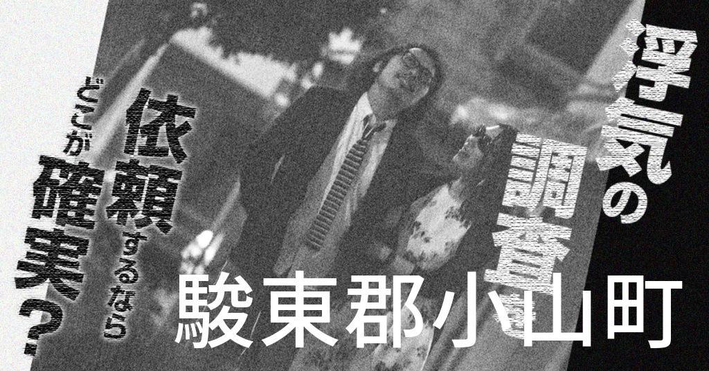 静岡県駿東郡小山町で浮気の調査を依頼するならどこが確実?費用がムダにならないおススメ興信所の選び方など