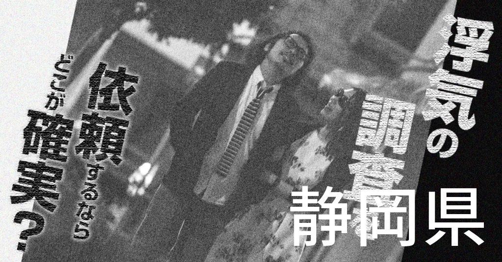 静岡県で浮気の調査を依頼するならどこが確実?費用がムダにならないおススメ興信所の選び方など