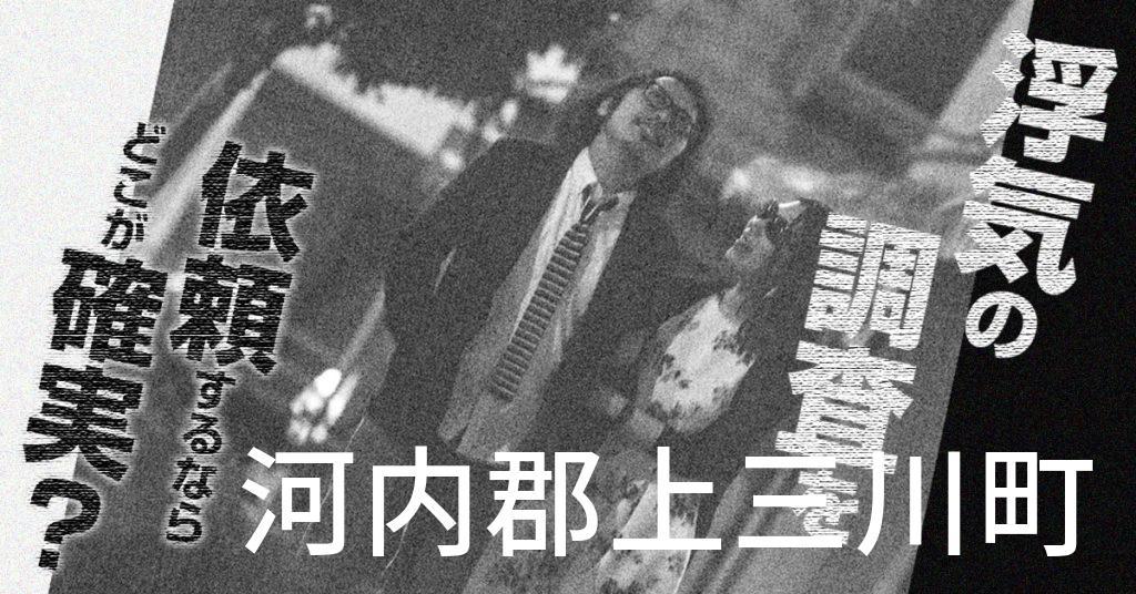 栃木県河内郡上三川町で浮気の調査を依頼するならどこが確実?費用がムダにならないおススメ興信所の選び方など