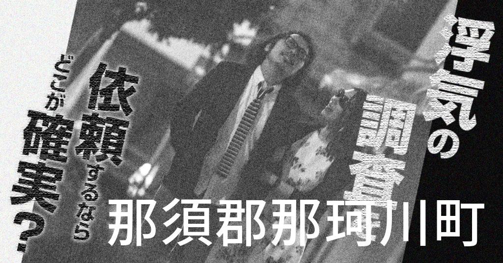 栃木県那須郡那珂川町で浮気の調査を依頼するならどこが確実?費用がムダにならないおススメ興信所の選び方など