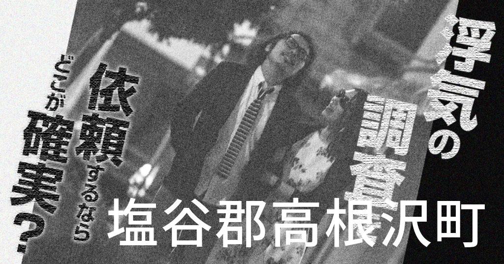 栃木県塩谷郡高根沢町で浮気の調査を依頼するならどこが確実?費用がムダにならないおススメ興信所の選び方など