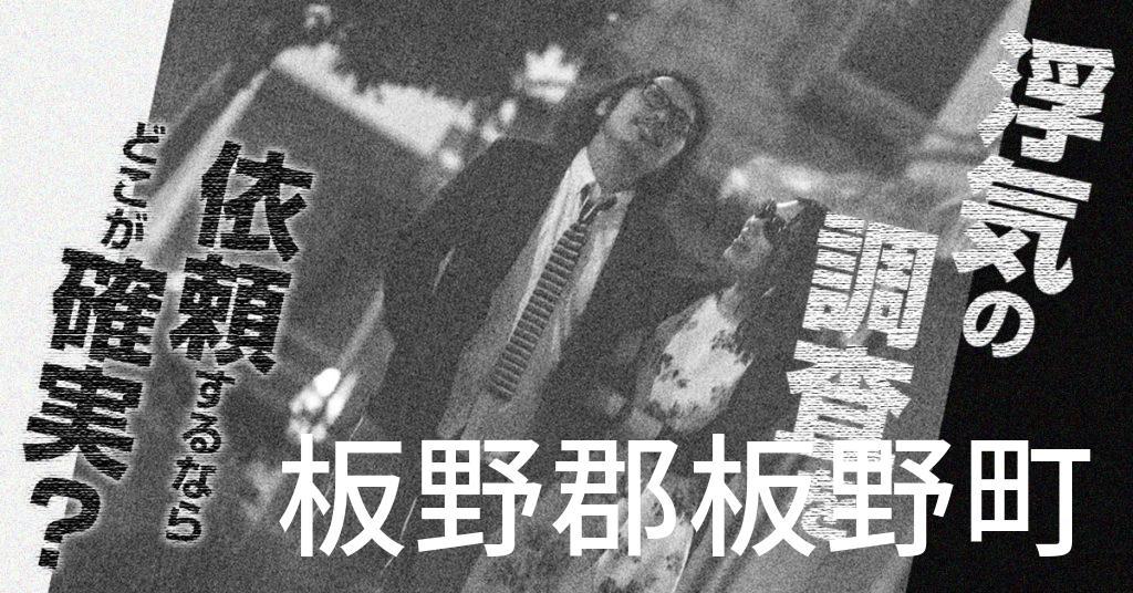 徳島県板野郡板野町で浮気の調査を依頼するならどこが確実?費用がムダにならないおススメ興信所の選び方など