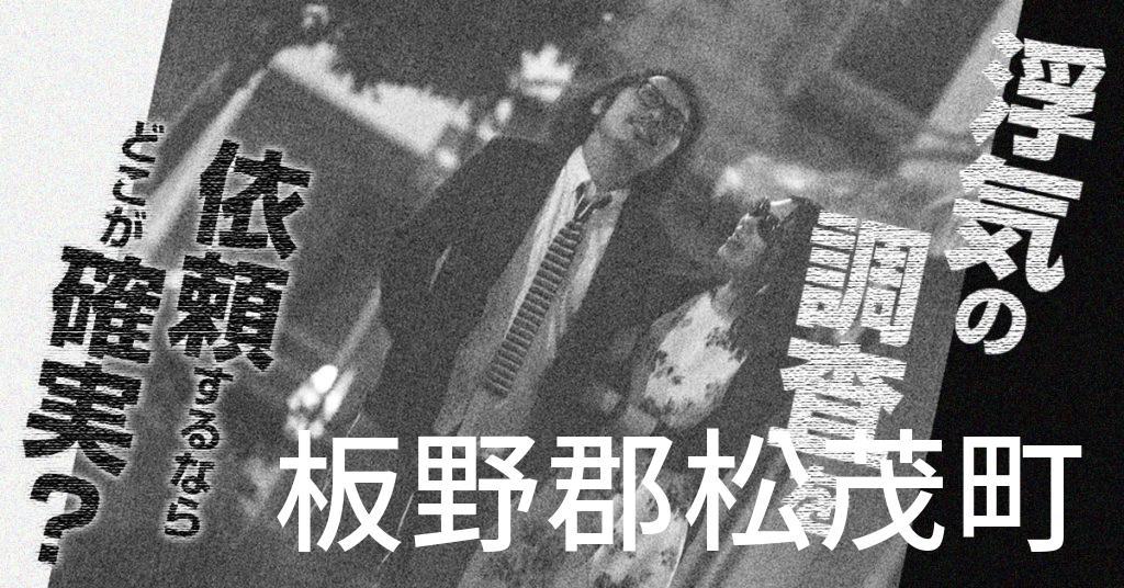徳島県板野郡松茂町で浮気の調査を依頼するならどこが確実?費用がムダにならないおススメ興信所の選び方など