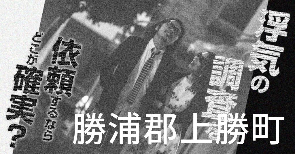 徳島県勝浦郡上勝町で浮気の調査を依頼するならどこが確実?費用がムダにならないおススメ興信所の選び方など