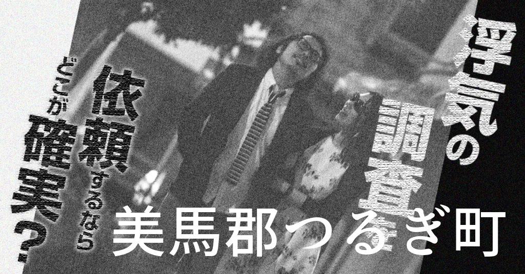 徳島県美馬郡つるぎ町で浮気の調査を依頼するならどこが確実?費用がムダにならないおススメ興信所の選び方など