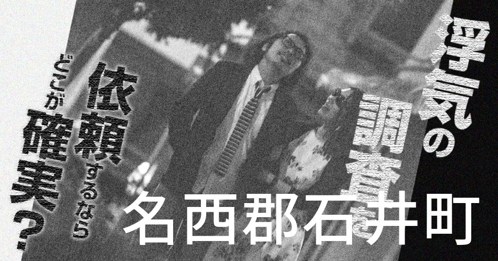 徳島県名西郡石井町で浮気の調査を依頼するならどこが確実?費用がムダにならないおススメ興信所の選び方など