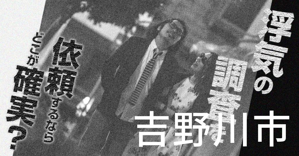 徳島県吉野川市で浮気の調査を依頼するならどこが確実?費用がムダにならないおススメ興信所の選び方など
