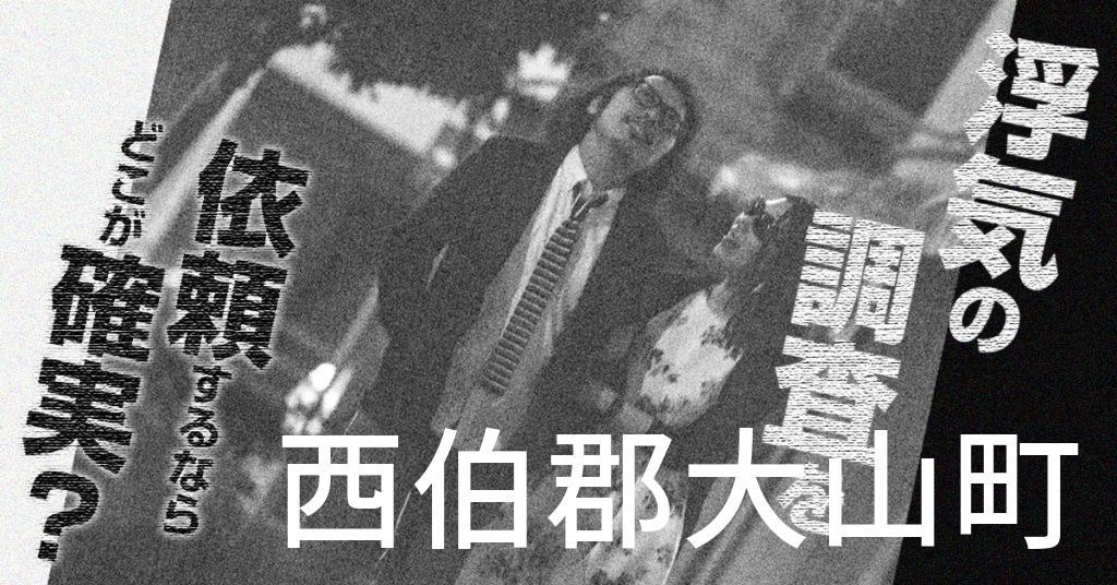 鳥取県西伯郡大山町で浮気の調査を依頼するならどこが確実?費用がムダにならないおススメ興信所の選び方など