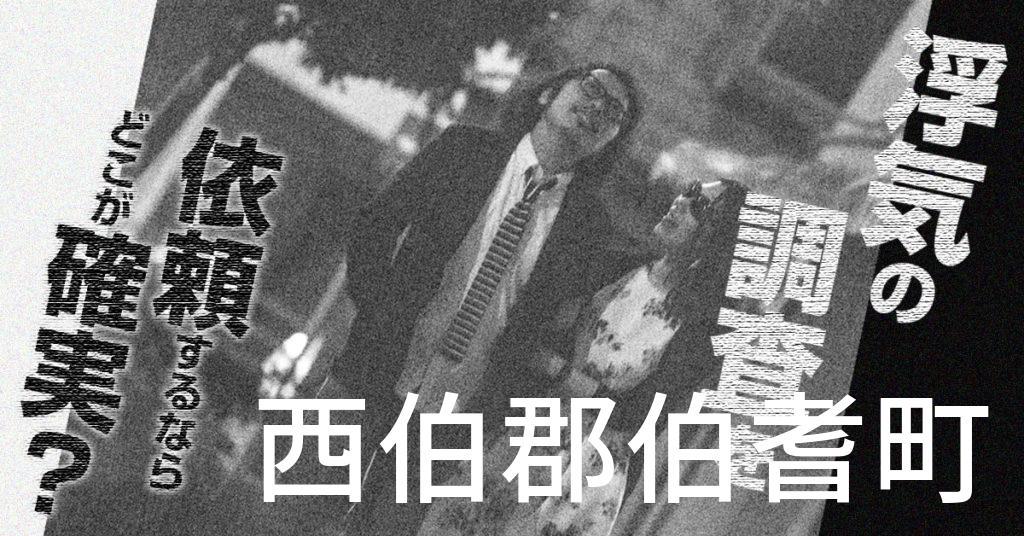 鳥取県西伯郡伯耆町で浮気の調査を依頼するならどこが確実?費用がムダにならないおススメ興信所の選び方など