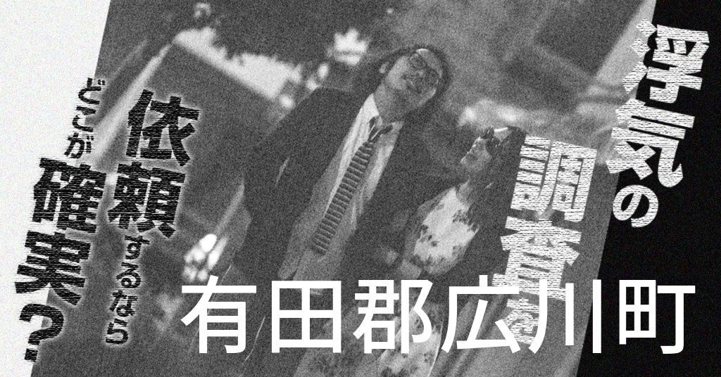 和歌山県有田郡広川町で浮気の調査を依頼するならどこが確実?費用がムダにならないおススメ興信所の選び方など
