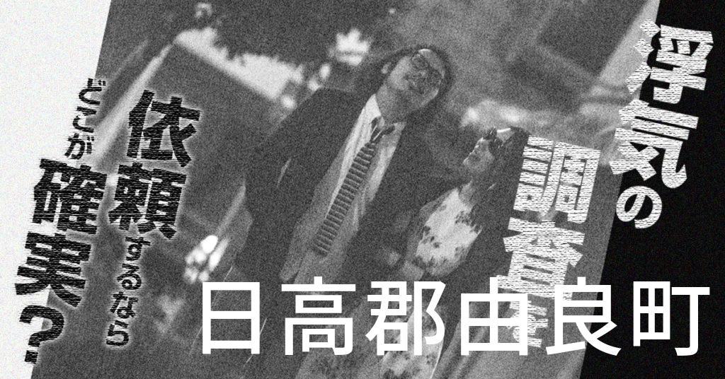 和歌山県日高郡由良町で浮気の調査を依頼するならどこが確実?費用がムダにならないおススメ興信所の選び方など