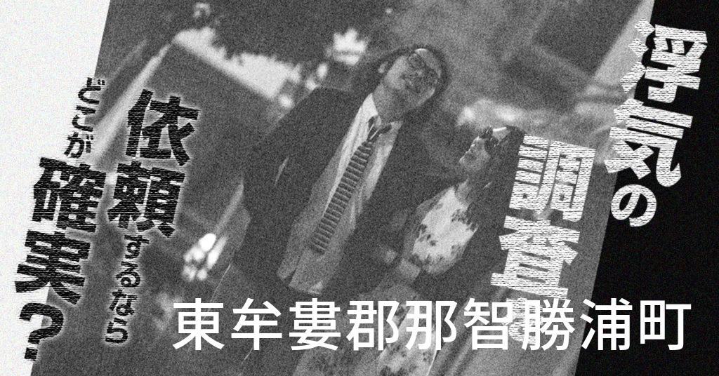 和歌山県東牟婁郡那智勝浦町で浮気の調査を依頼するならどこが確実?費用がムダにならないおススメ興信所の選び方など