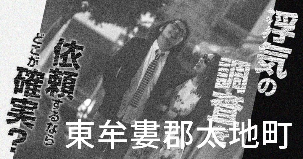 和歌山県東牟婁郡太地町で浮気の調査を依頼するならどこが確実?費用がムダにならないおススメ興信所の選び方など